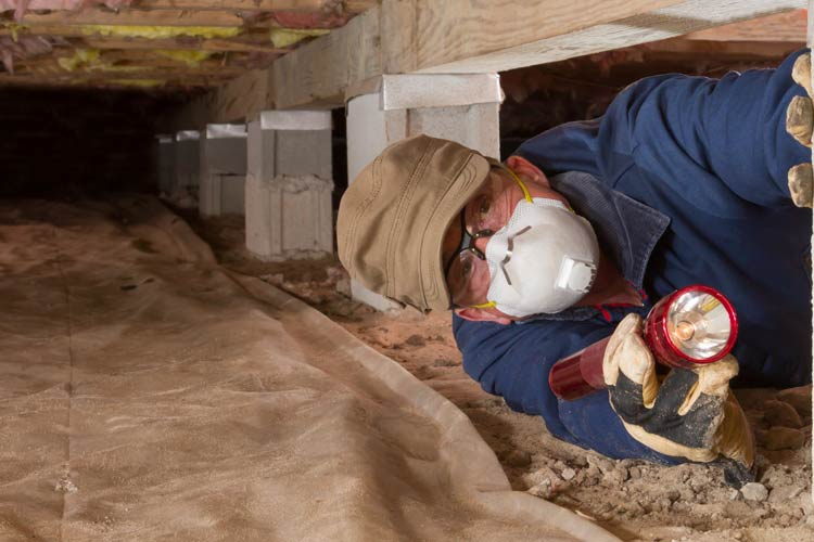 Should I Seal Off Crawl Space Vents or Keep Them Open?