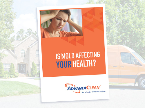 advantaclean-mold-ebook