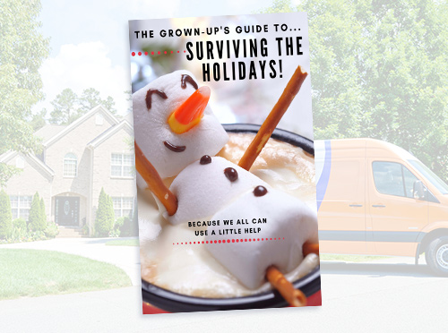 advantaclean-surviving-the-holidays